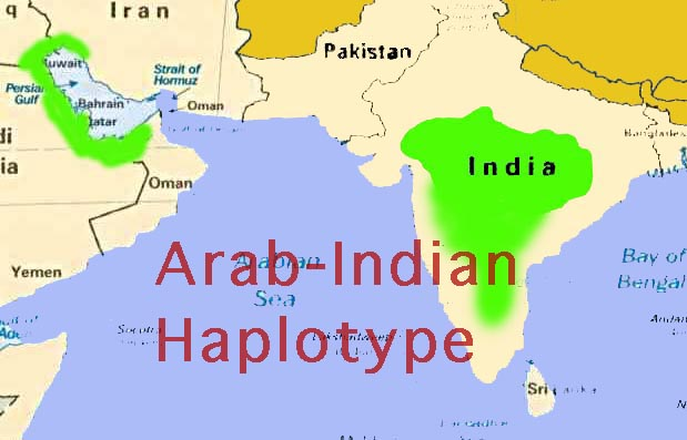 Image of SickleHaplotype Distribution in the Middle East and India